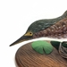 Hand Carved Green Heron - 650